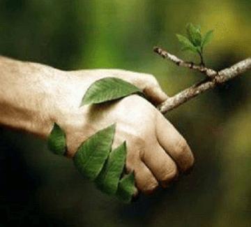 Chráňte prírodu nahradením nebezpečných domácich chemikálií a pomáhajte ľuďom žiť v zdravšom prostredí.